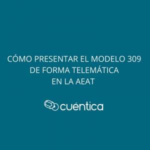 Cómo presentar el modelo 309 telemáticamente importando el fichero en la AEAT